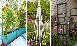 gardening u0026 outdoor ideas u0026 how tos from lowe u0027s