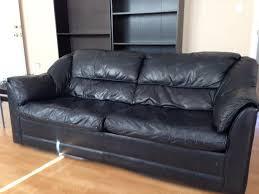 Narrow Leather Sofa Furniture Lounge Chair Bed Narrow Sofa Leather