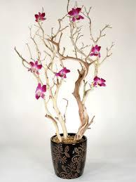 Manzanita Branches Centerpieces Events By Tammy Orchid And Manzanita Branch Centerpieces