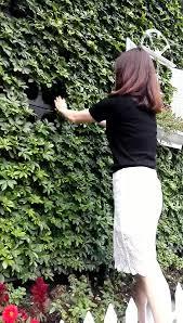 vertical garden green system decorative green wall panel flower