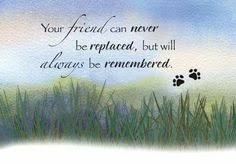 sympathy for loss of dog the loss is immeasureable sympathy card dog rainbow bridge