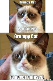 Angry Cat Good Meme - grumpy cat is not amused by iamstylus meme center