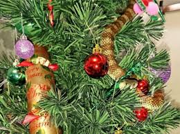 woman finds venomous snake wrapped around her christmas tree the
