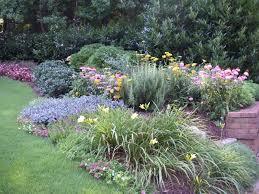 perennials cutting gardens
