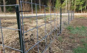 fence wire dog fence captivating dog fence with chicken wire