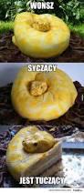 Funny Halloween Cakes by Best 25 Birthday Mem Ideas Only On Pinterest 7th Birthday Cakes