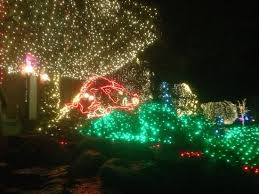 fayetteville square christmas lights razorback christmas lights on fayetteville square picture of