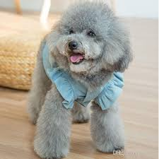 New Embroider Flower Pet Dog Clothes Denim Dog Dress Puffed Sleeves