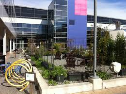 fotos google inc headquarters