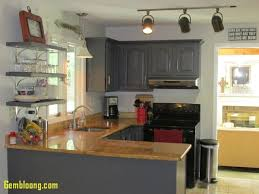 paint my kitchen cabinets kitchen kitchen cabinet paint luxury who can paint my kitchen