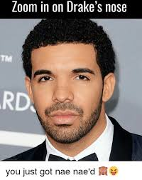 Nae Nae Meme - zoom in on drake s nose you just got nae nae d meme on
