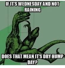 Hump Day Memes - ifitswednesday and not raining does that meanits dry hump day