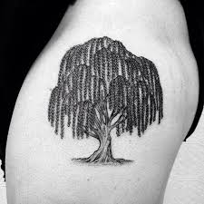weeping willow designs ideas and meaning tattoos for you