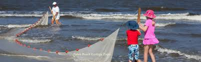 tybee beach vacation rentals tybee island ga