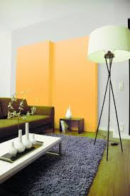 Modern Country Wohnzimmer 55 Best Inspiration Wohnzimmer Images On Pinterest Live Colors