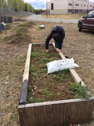 What Are The Gardening Zones - wicked raven farm blog houston high and the great seed grant