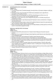 resume exles for managers recruiting manager resume sles velvet