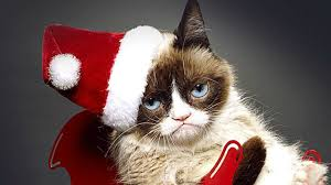 cat christmas 12 days of grumpy cat christmas comics 7 sweaters nerdist