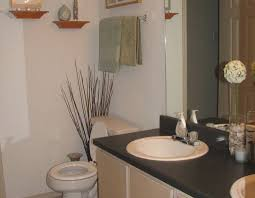 Decorating Ideas For Small Bathrooms In Apartments Bathroom - Bathroom designs for apartments