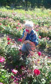 la cuisine des plantes sauvages la cuisine des plantes sauvages et des fleurs tandem production