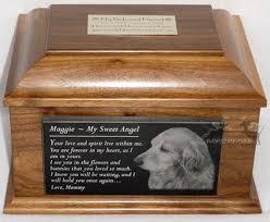 dog urns smart