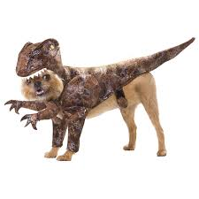 animal planet raptor pet costume buycostumes com