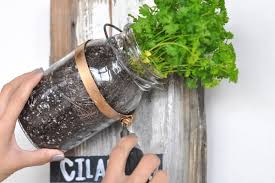 wall garden design ideas diy projects for decorating small spaces