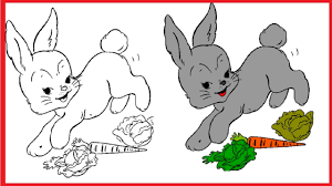 free animal coloring pages for kids animal coloring pages book