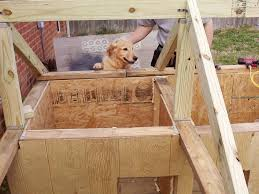 dog barn meet the winners of the best doggone doghouse contest diy