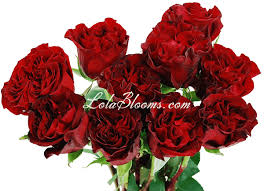 roses and hearts wholesale wedding roses hearts garden
