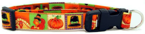 thanksgiving fall collars from k9 bytes inc