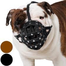 boxer dog on motorcycle amazon com collardirect basket dog muzzle for boxer english