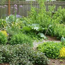 90 best permaculture images on pinterest permaculture farms and