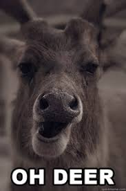 Oh Deer Meme - oh ewe