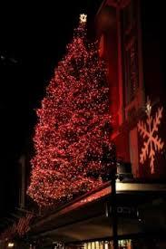 macy s tree lighting boston macy s annual christmas tree lighting boston central