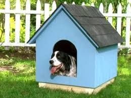 Window Seats For Dogs - pet projects home improvement diy network diy