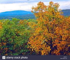 Oklahoma mountains images Fall color at poteau mountain oklahoma mountains heavener jpg