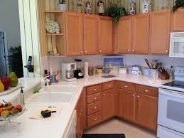 Kitchen Cabinet Hardware Discount Storage Cabinets With Doors And Shelves Tlsplant Com Creative