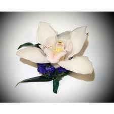 orchid boutonniere cymbid orchid boutonniere