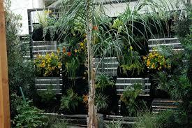 tropical balcony garden home design ideas