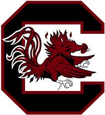 south carolina gamecocks football wikipedia