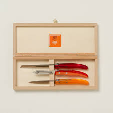 laguiole coffret kitchen knife set terrain