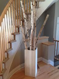 branch decor interesting grouping of birch tree branches for the home
