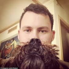 Cat Beard Meme - are dog beards the new cat beards pet owners create canine crazy