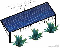 solar panels clipart growing crops on photovoltaic solar farms is a u0027win win u0027 situation
