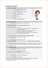 curriculum vitae for job application pdf sle cv pdf carbon materialwitness co