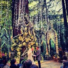 redwood forest wedding venue simple forest wedding venues b64 in pictures selection m15 with
