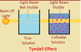 the scattering of light by colloids is called colloids class 9 is matter around us pure