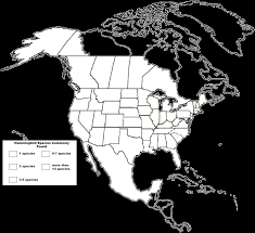 Blank American Map by How Many Hummingbird Species