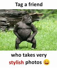 Tag A Friend Meme - tag a friend who takes very stylish photos meme on esmemes com
